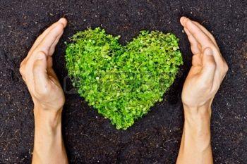 Dia Mundial Energía - 14 febrero